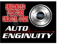 AutoEnginuity FORD Enhanced Interface