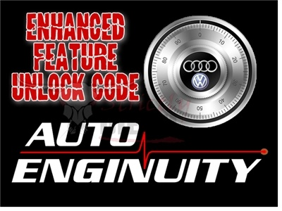 AutoEnginuity AUDI/VW Enhanced Interface