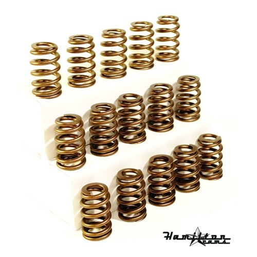 Hamilton Cams 6.0/6.4 HD Valve Springs